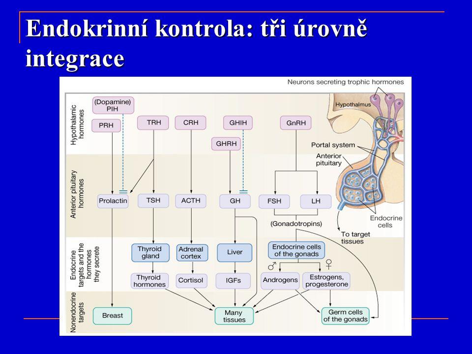 Endokrinní kontrola: tři úrovně integrace
