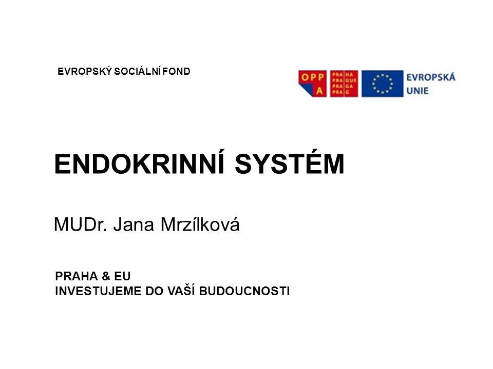 ENDOKRINNÍ SYSTÉM MUDr. Jana Mrzílková