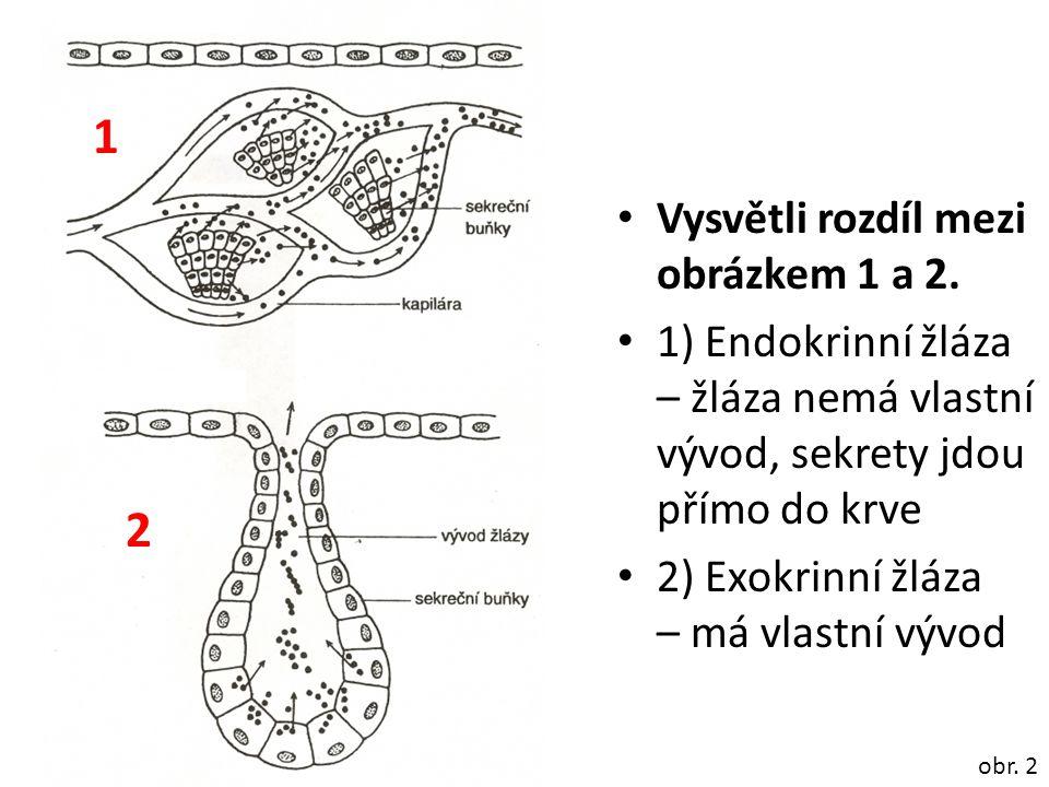 1 2 Vysvětli rozdíl mezi obrázkem 1 a 2.