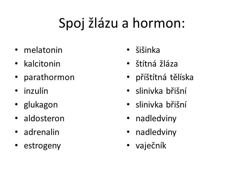 Spoj žlázu a hormon: melatonin kalcitonin parathormon inzulín glukagon