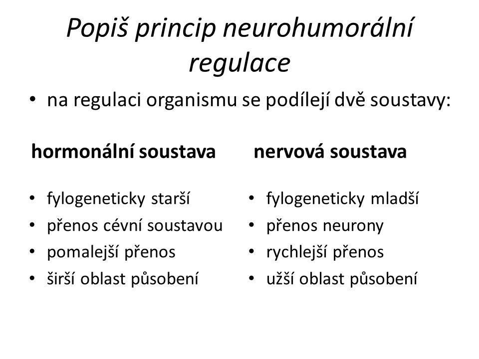 Popiš princip neurohumorální regulace