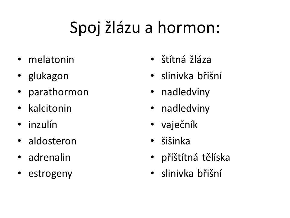 Spoj žlázu a hormon: melatonin glukagon parathormon kalcitonin inzulín