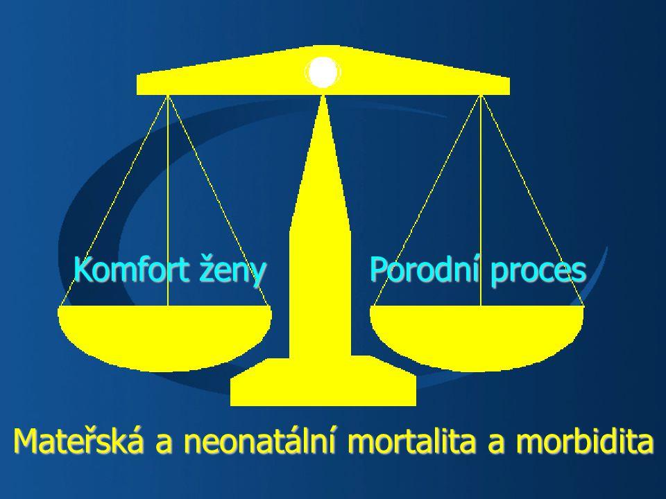 Mateřská a neonatální mortalita a morbidita