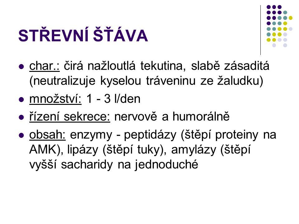 STŘEVNÍ ŠŤÁVA char.: čirá nažloutlá tekutina, slabě zásaditá (neutralizuje kyselou tráveninu ze žaludku)