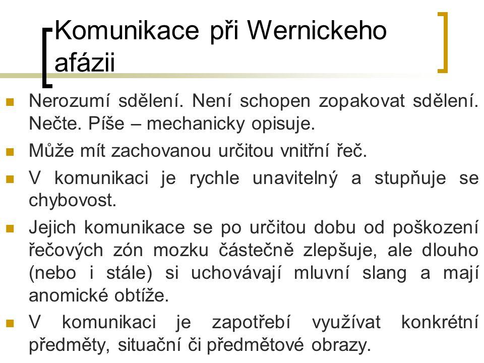 Komunikace při Wernickeho afázii
