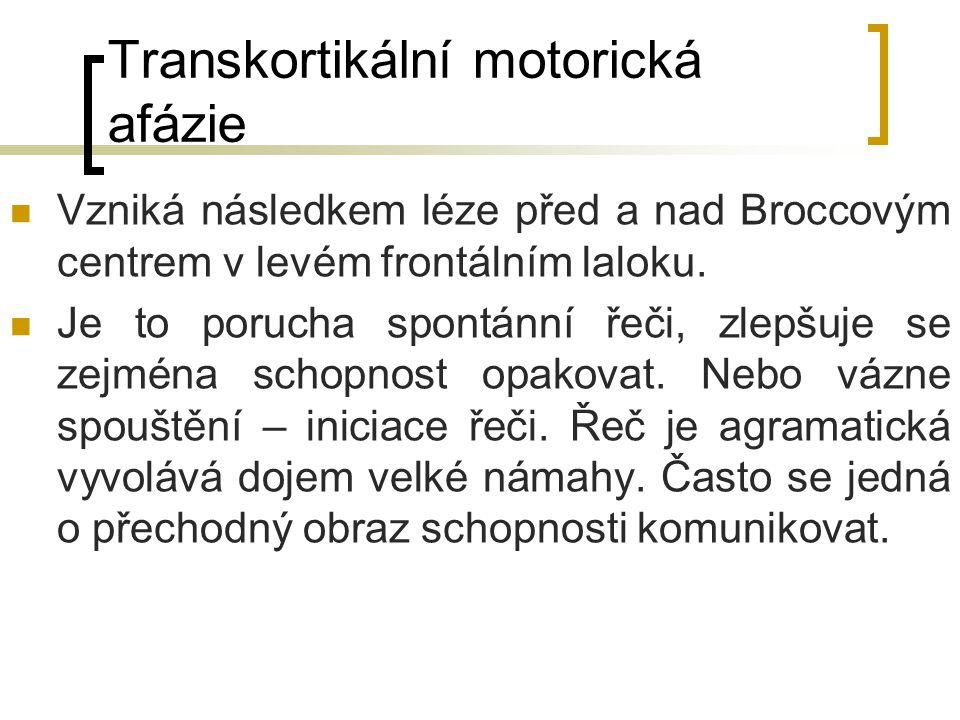 Transkortikální motorická afázie