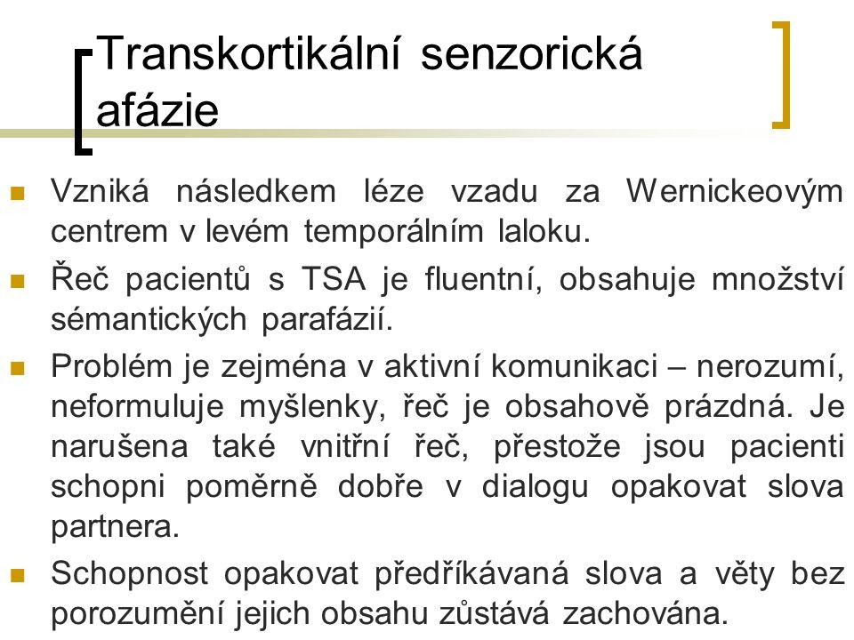 Transkortikální senzorická afázie