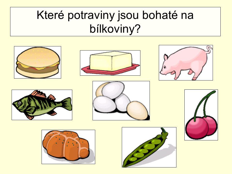 Které potraviny jsou bohaté na bílkoviny