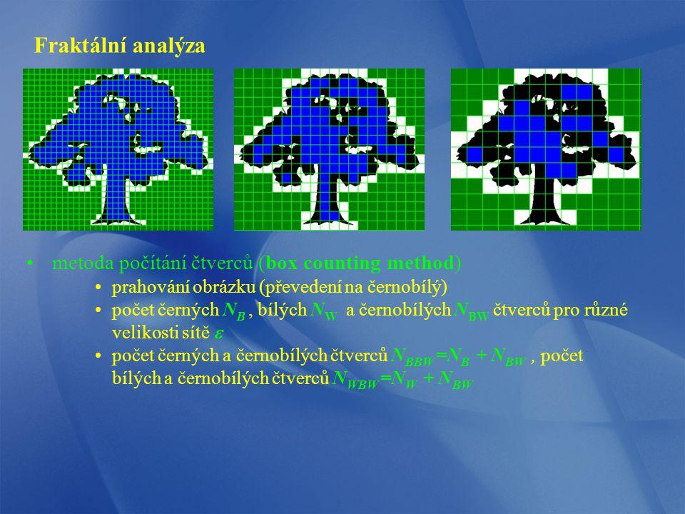 Fraktální analýza metoda počítání čtverců (box counting method)