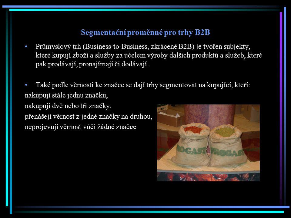 Segmentační proměnné pro trhy B2B