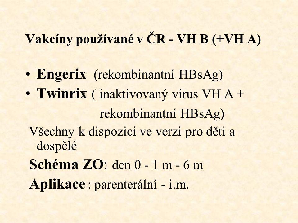 Vakcíny používané v ČR - VH B (+VH A)