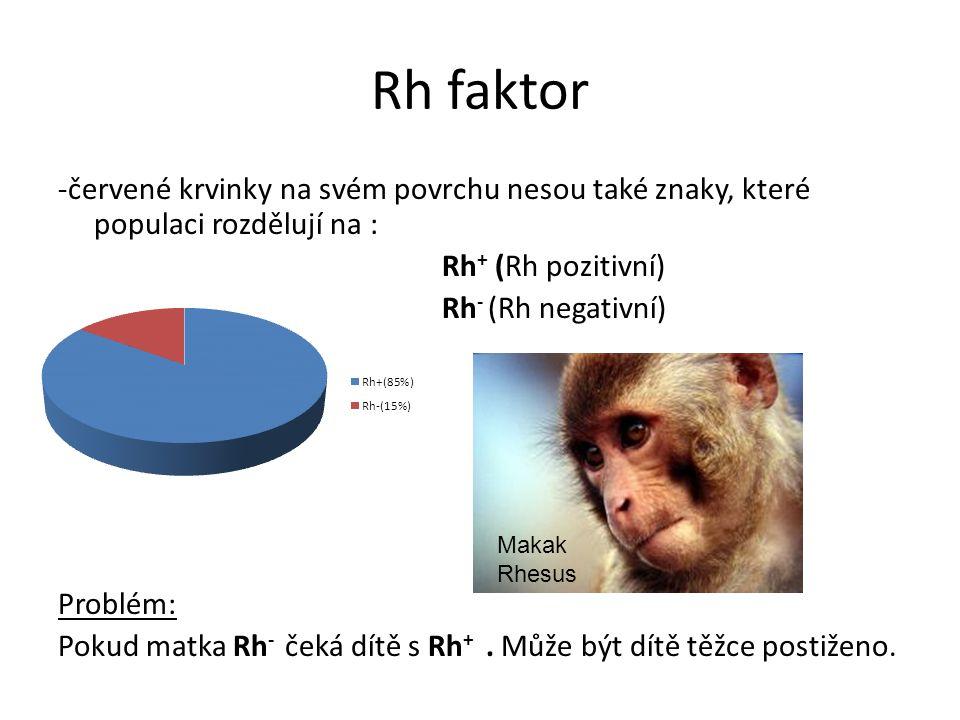 Rh faktor