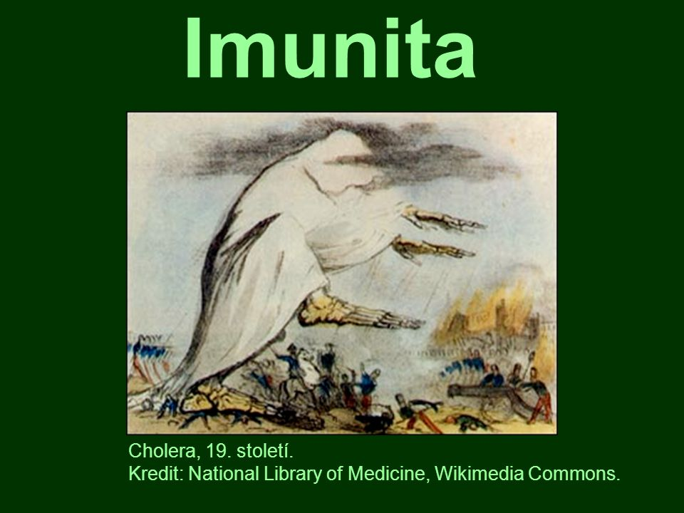 Imunita Cholera, 19. století.