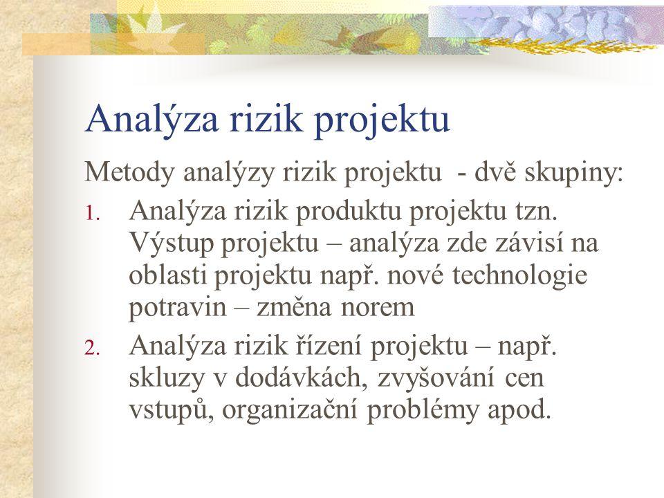 Analýza rizik projektu