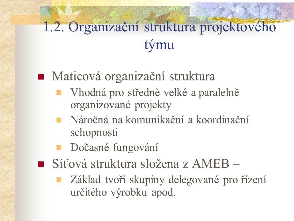 1.2. Organizační struktura projektového týmu