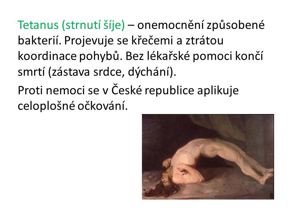 Tetanus (strnutí šíje) – onemocnění způsobené bakterií