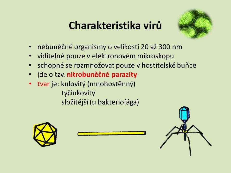 Charakteristika virů nebuněčné organismy o velikosti 20 až 300 nm