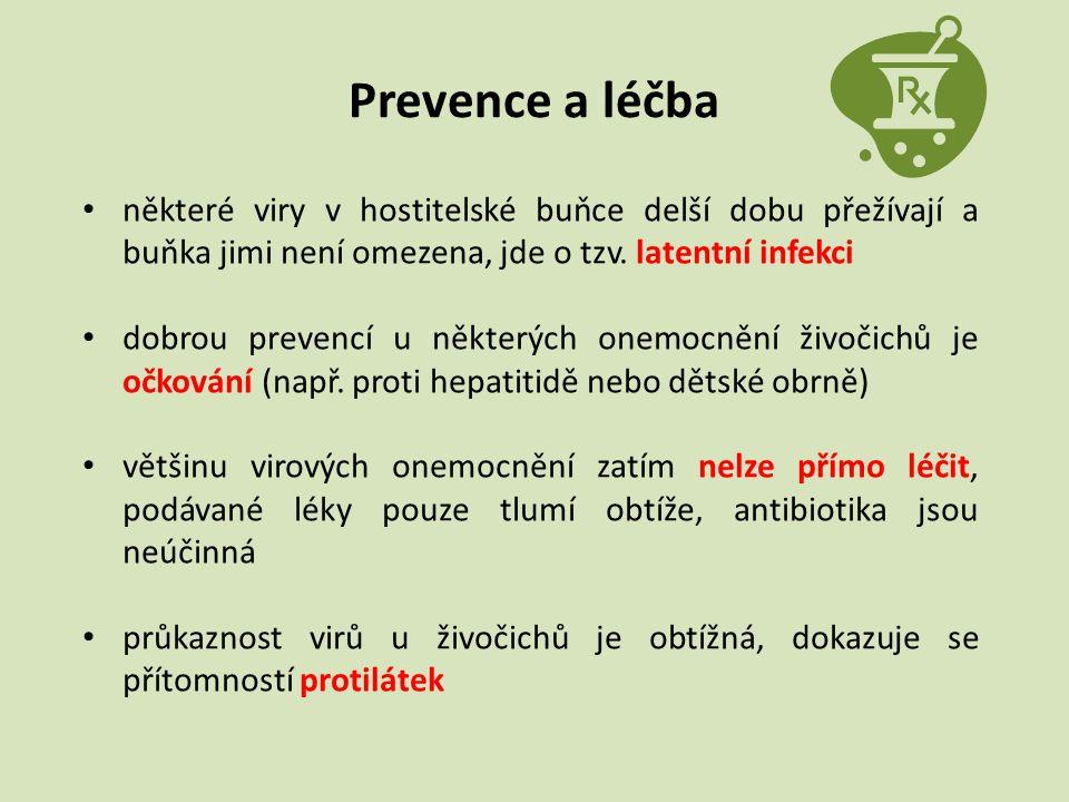 Prevence a léčba některé viry v hostitelské buňce delší dobu přežívají a buňka jimi není omezena, jde o tzv. latentní infekci.