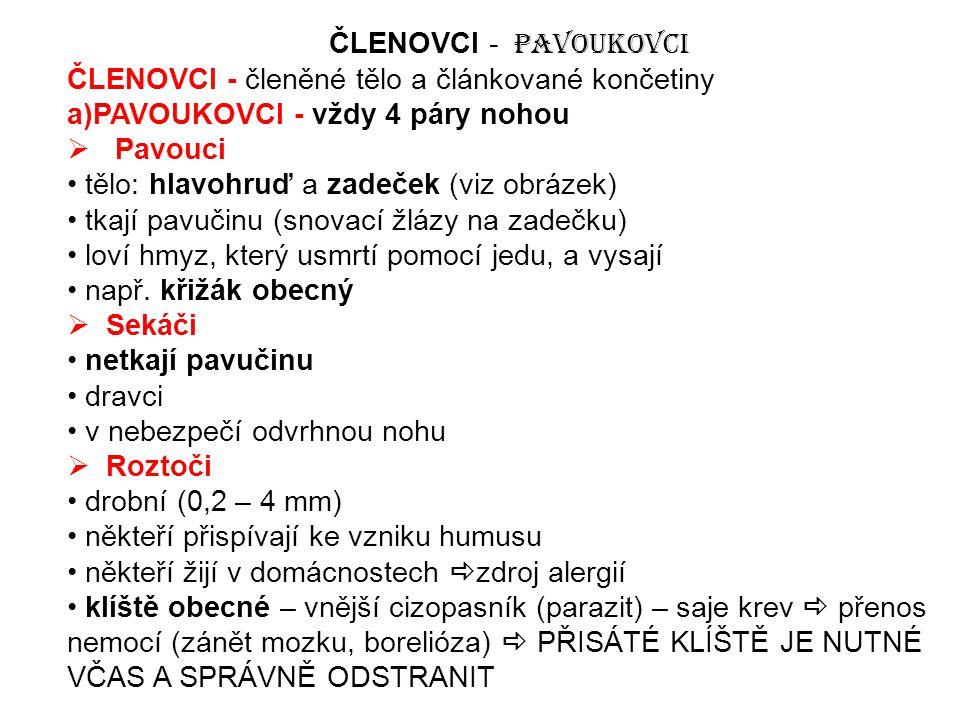 ČLENOVCI - Pavoukovci ČLENOVCI - členěné tělo a článkované končetiny. a)PAVOUKOVCI - vždy 4 páry nohou.