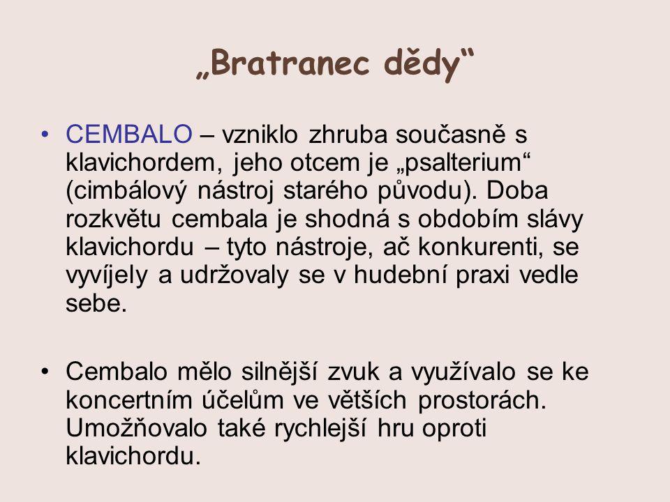"""Bratranec dědy"