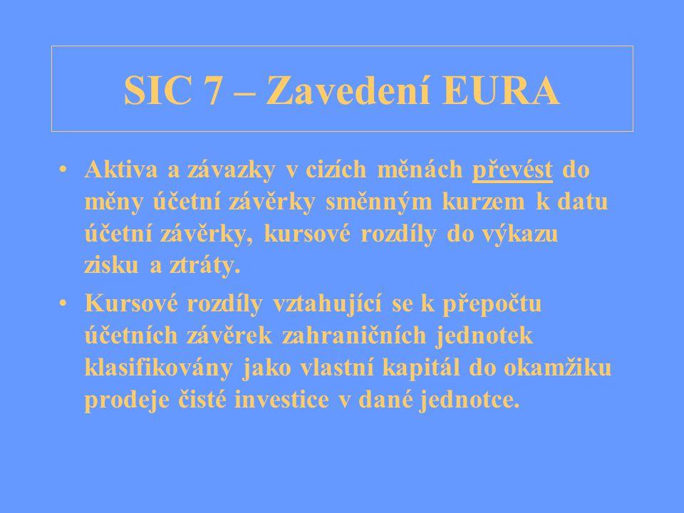 SIC 7 – Zavedení EURA