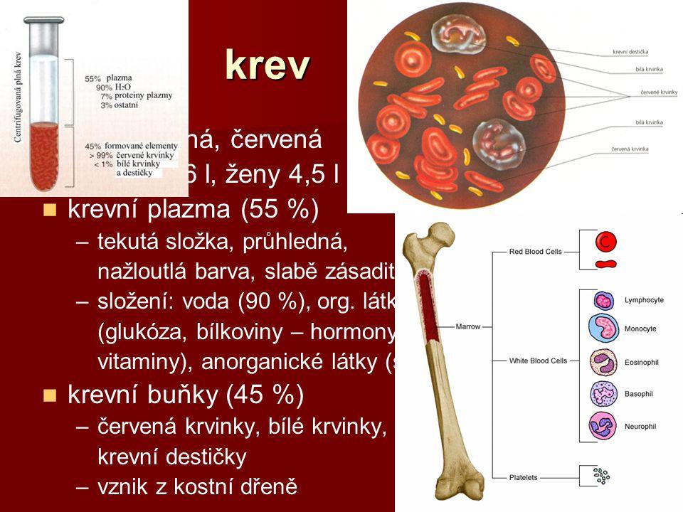 krev neprůhledná, červená muži: 5 – 6 l, ženy 4,5 l