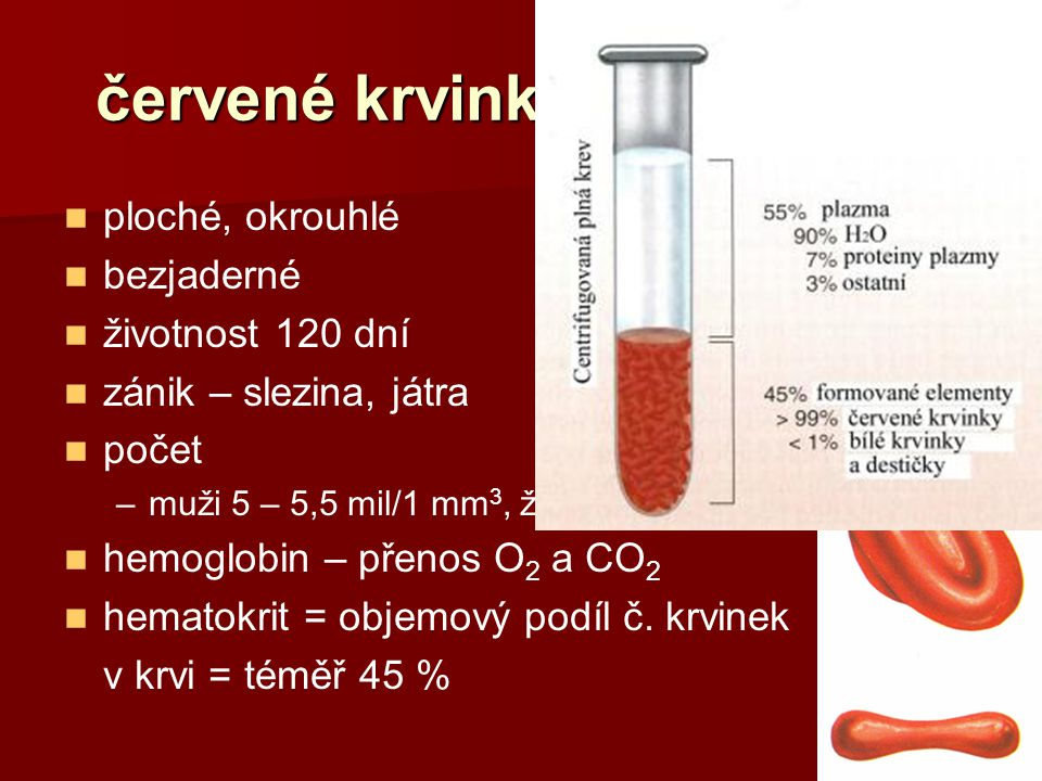 červené krvinky (erytrocyty)