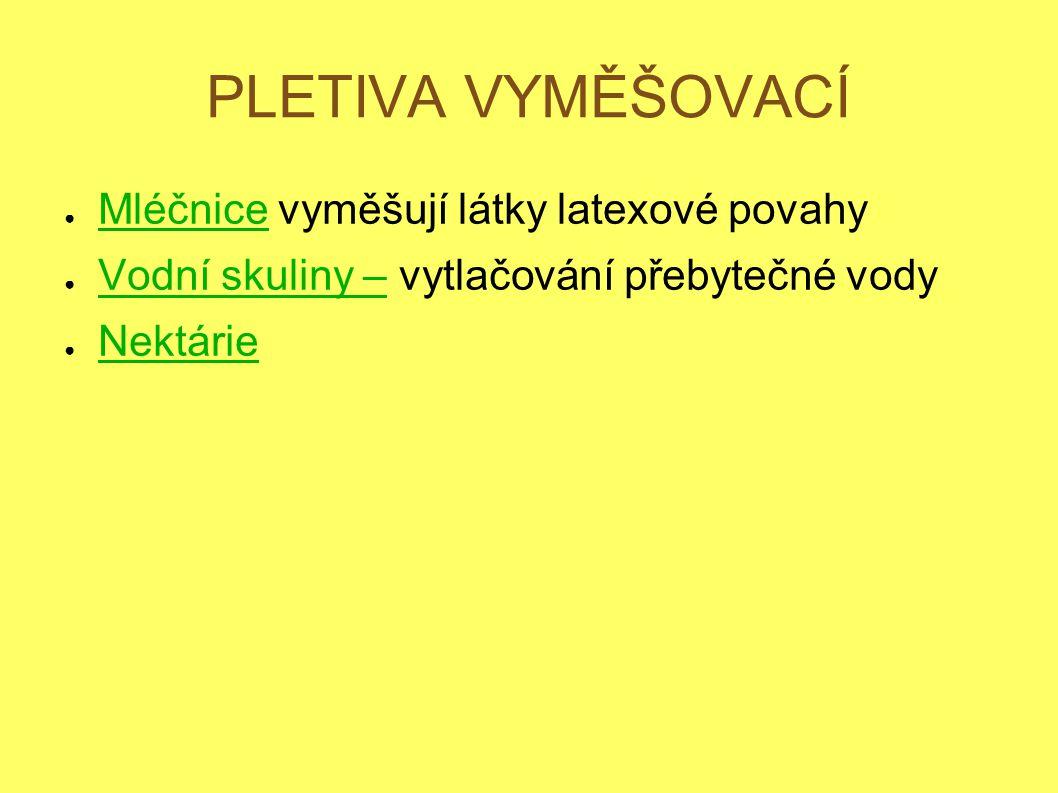 PLETIVA VYMĚŠOVACÍ Mléčnice vyměšují látky latexové povahy