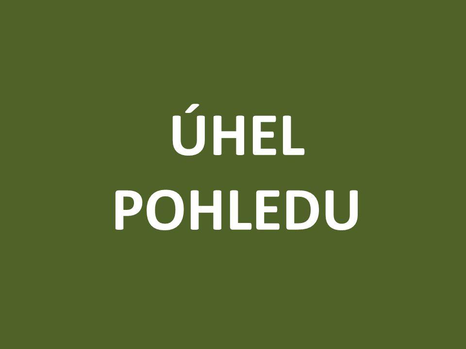 ÚHEL POHLEDU