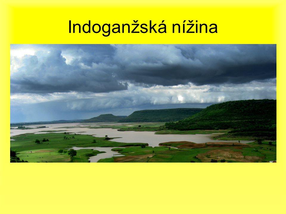 Indoganžská nížina