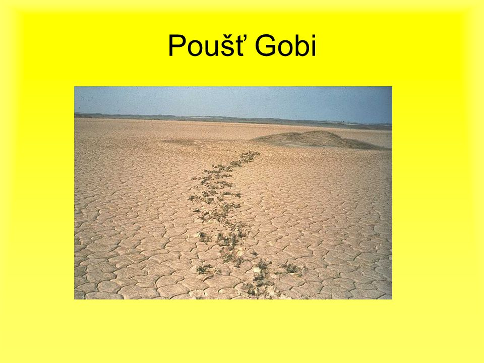 Poušť Gobi