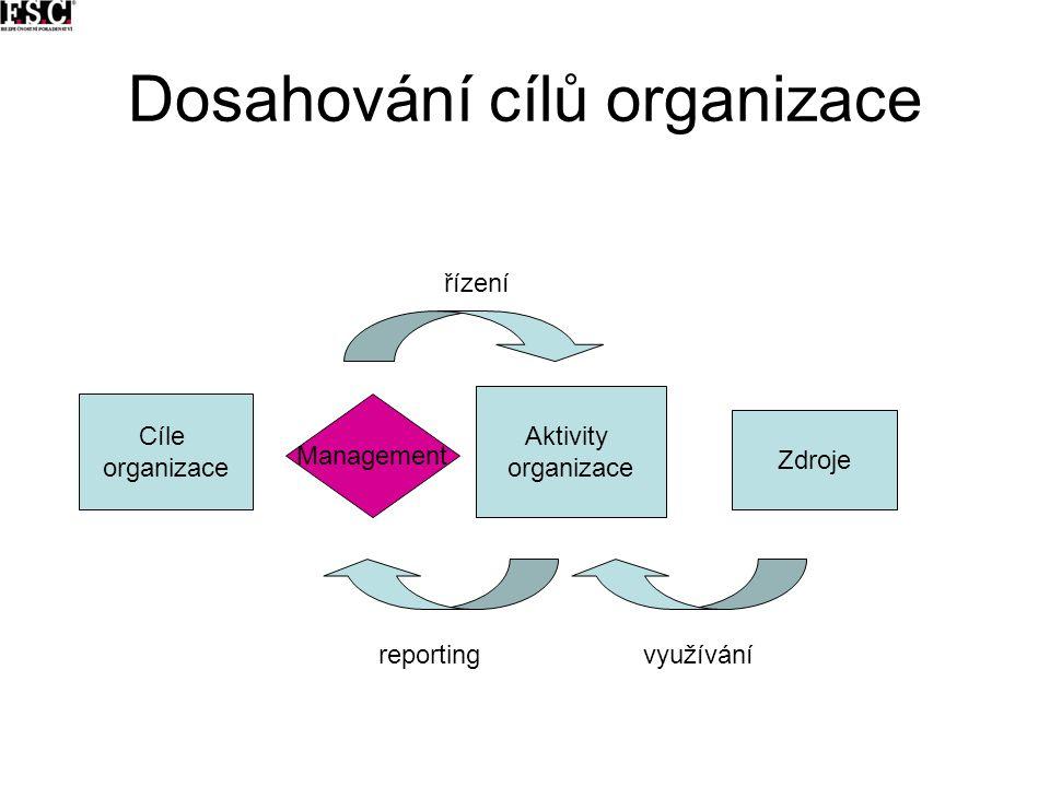 Dosahování cílů organizace