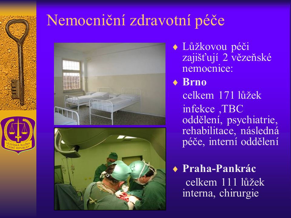Nemocniční zdravotní péče