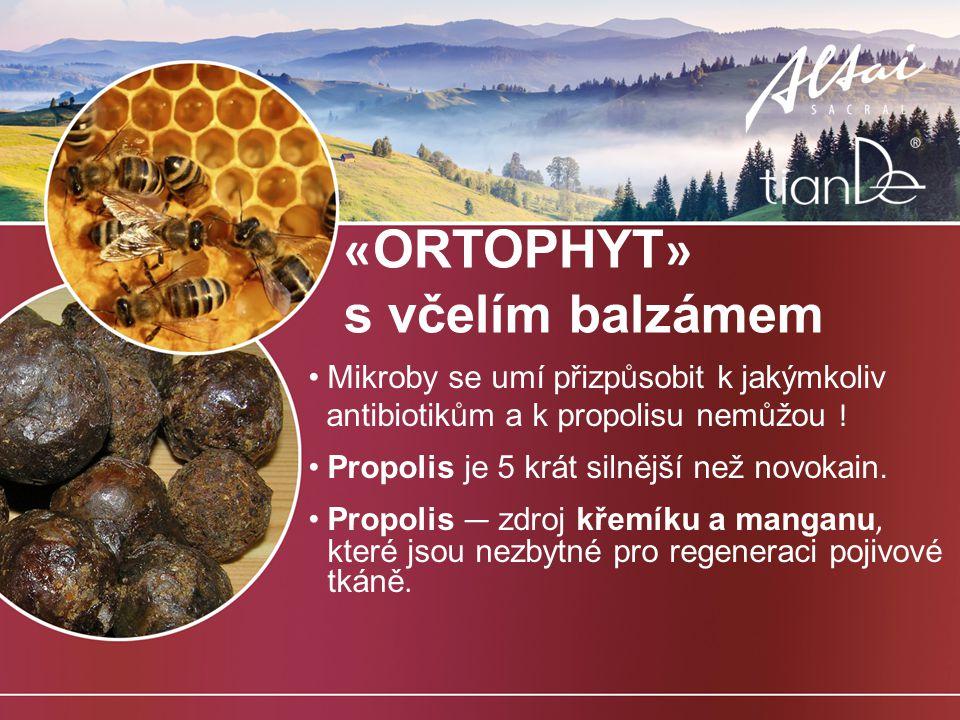 «ORTOPHYT» s včelím balzámem