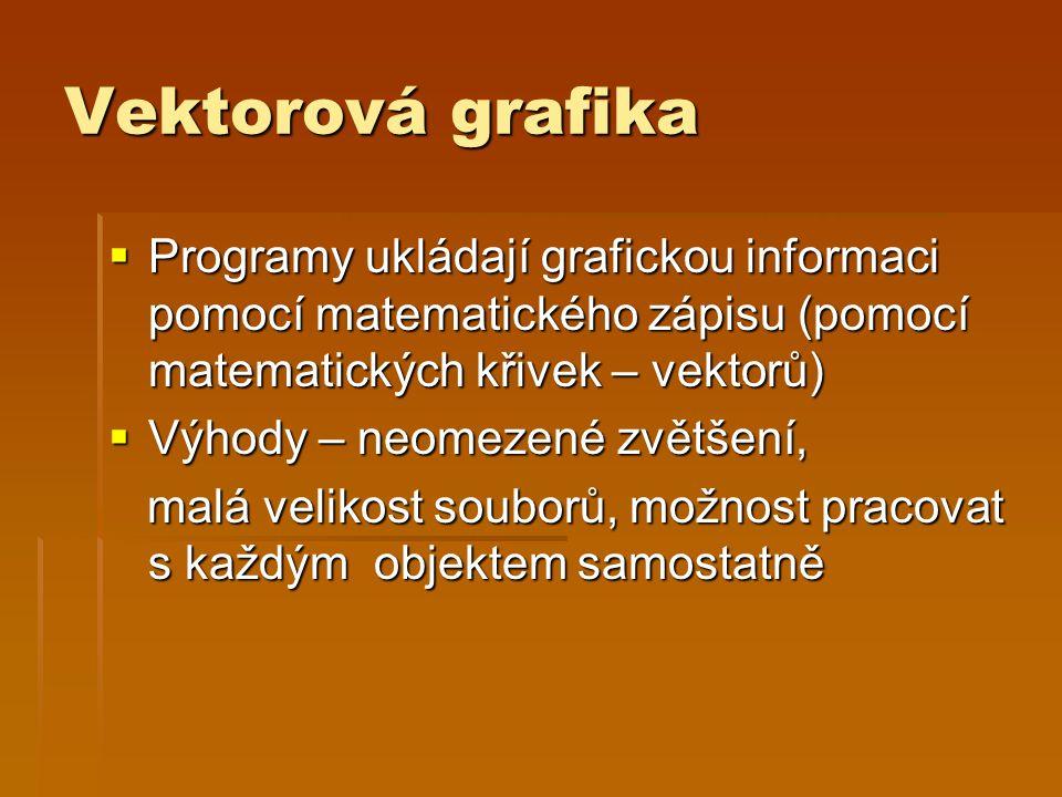 Vektorová grafika Programy ukládají grafickou informaci pomocí matematického zápisu (pomocí matematických křivek – vektorů)