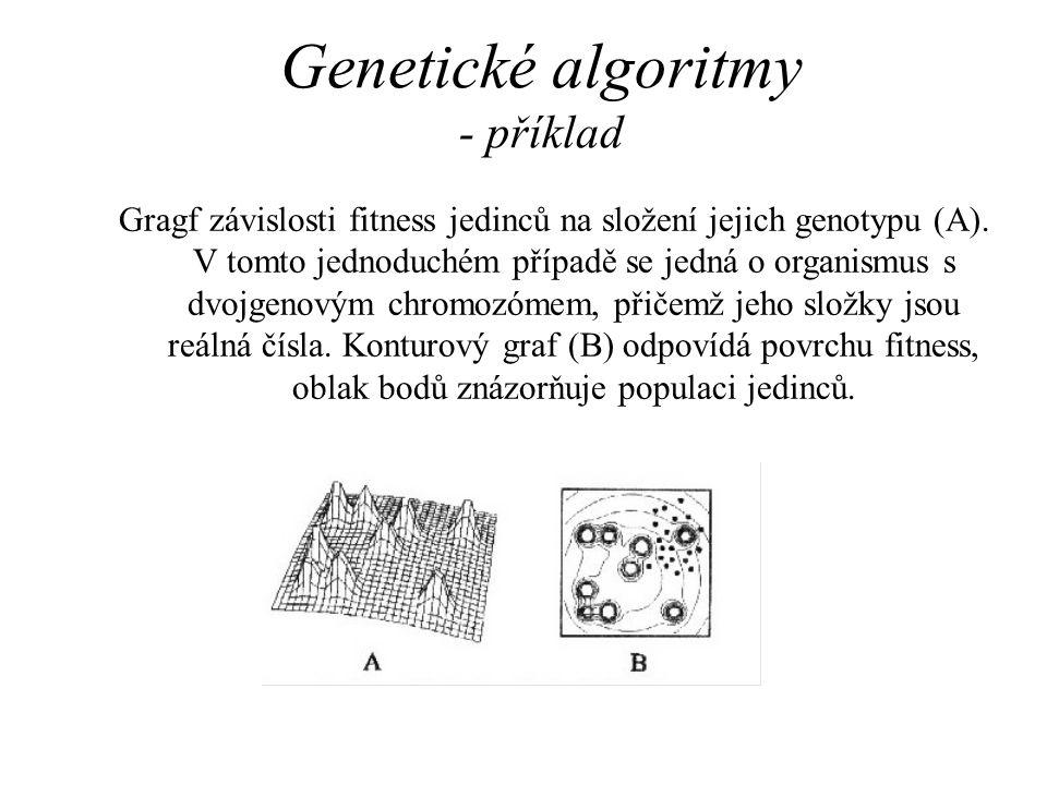Genetické algoritmy - příklad