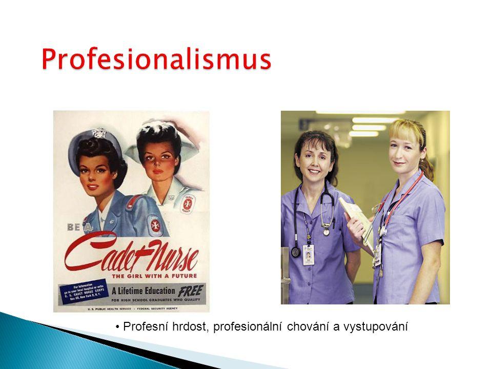 Profesionalismus Profesní hrdost, profesionální chování a vystupování