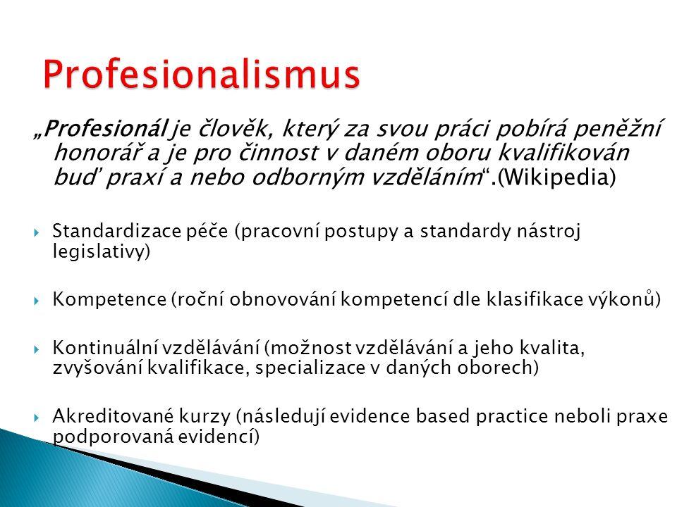 Profesionalismus