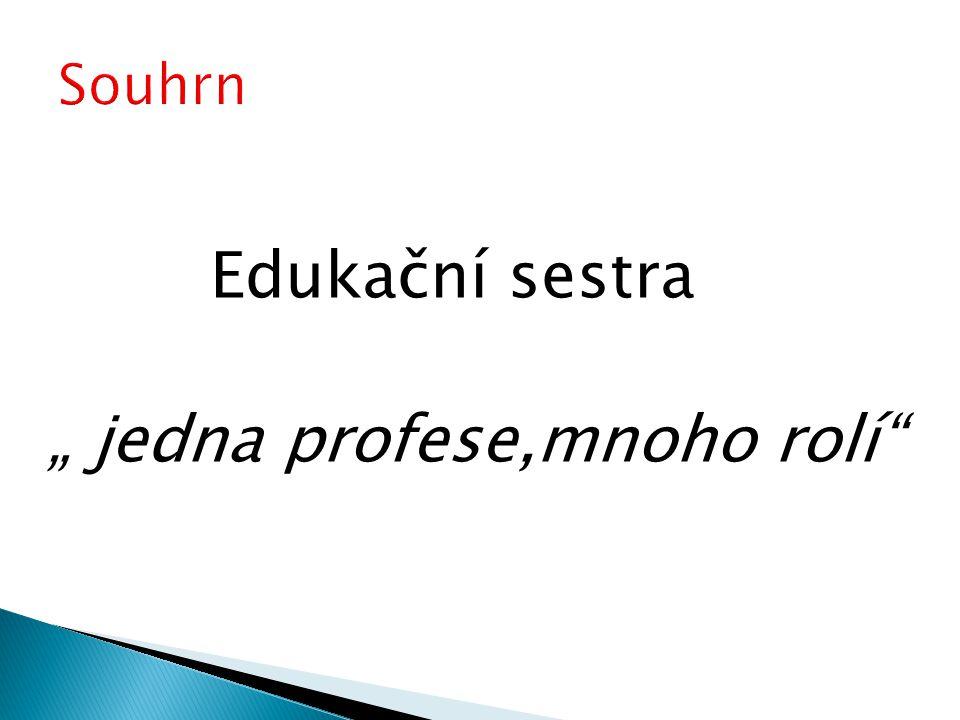 """Edukační sestra """" jedna profese,mnoho rolí"""