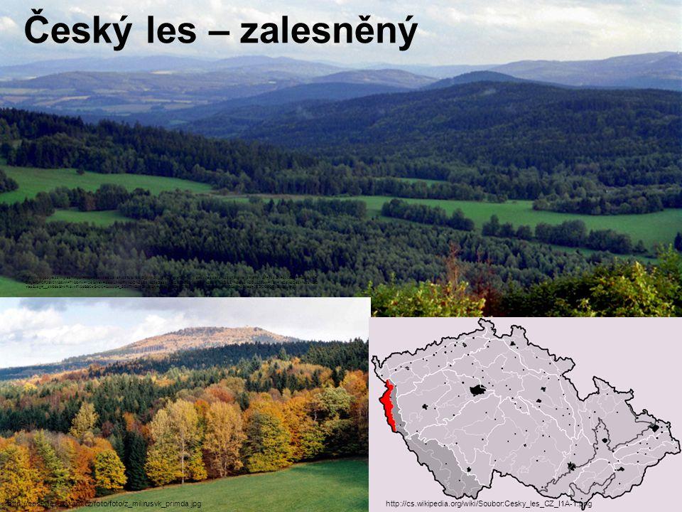 Český les – zalesněný