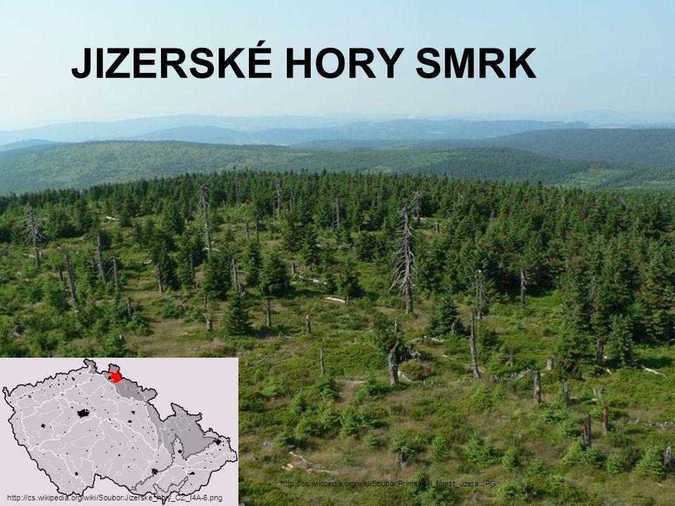 JIZERSKÉ HORY SMRK http://cs.wikipedia.org/wiki/Soubor:Primaveal_forest_Jizera.JPG.