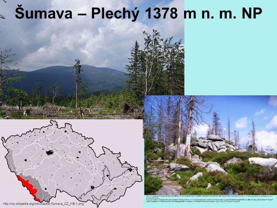 Šumava – Plechý 1378 m n. m. NP