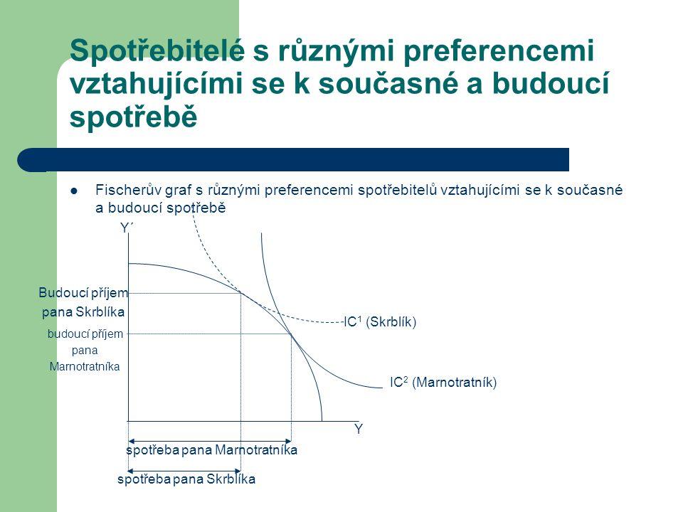 Spotřebitelé s různými preferencemi vztahujícími se k současné a budoucí spotřebě
