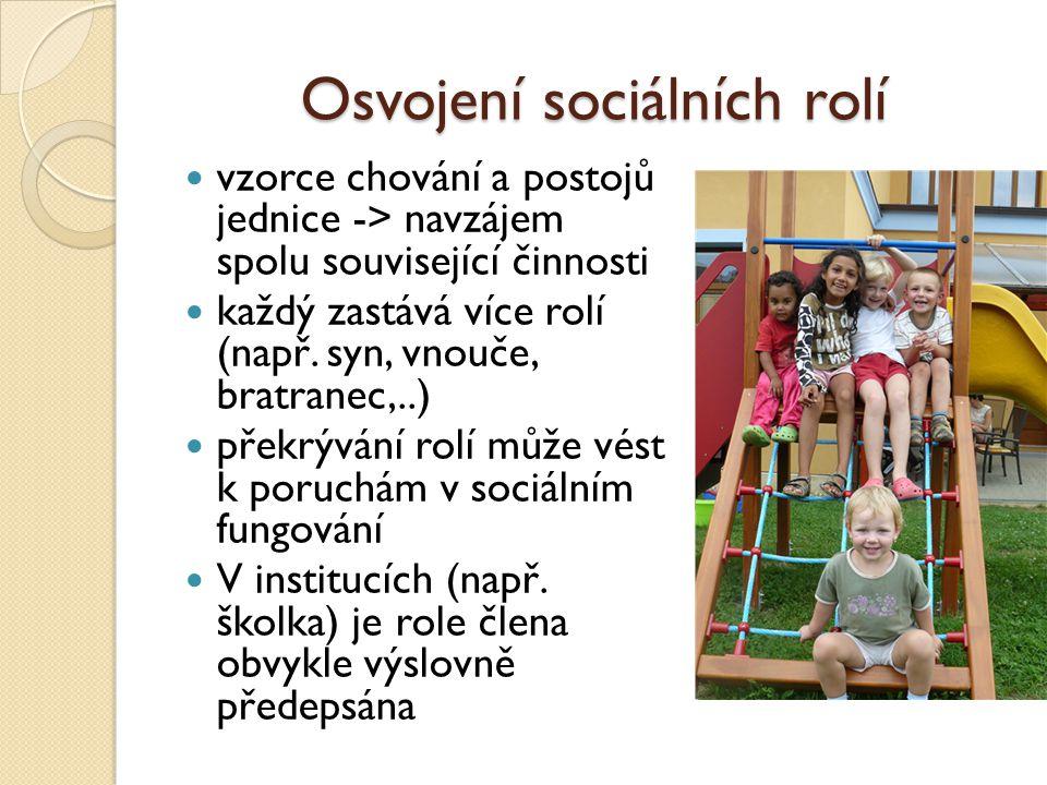 Osvojení sociálních rolí