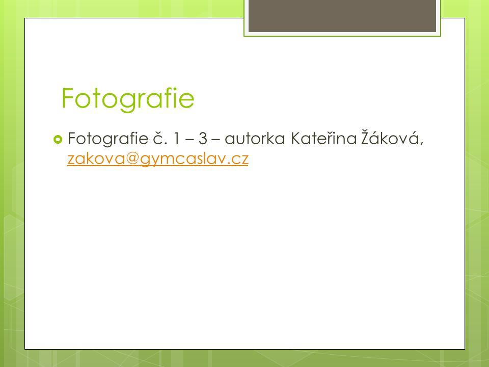 Fotografie Fotografie č. 1 – 3 – autorka Kateřina Žáková, zakova@gymcaslav.cz