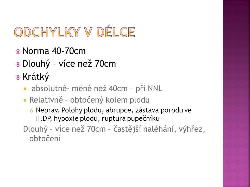 Odchylky v délce Norma 40-70cm Dlouhý – více než 70cm Krátký