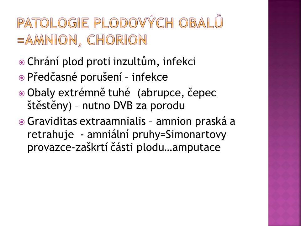 Patologie plodových obalů =amnion, chorion
