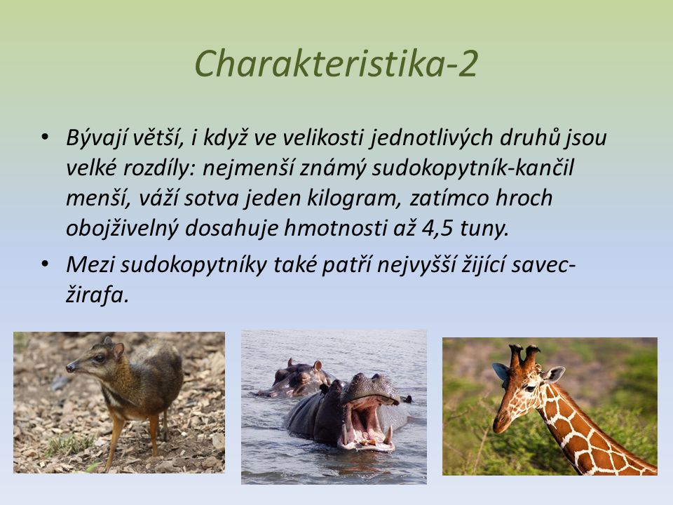 Charakteristika-2