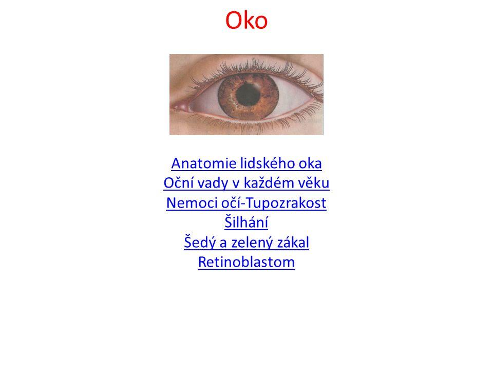 Oko Anatomie lidského oka Oční vady v každém věku Nemoci očí-Tupozrakost Šilhání Šedý a zelený zákal Retinoblastom.