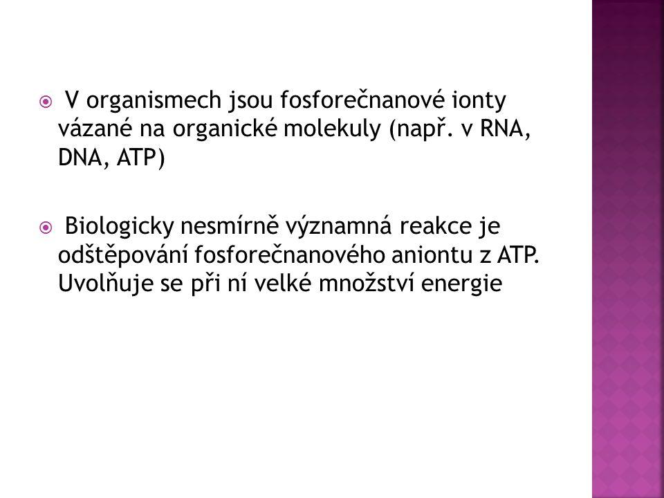 V organismech jsou fosforečnanové ionty vázané na organické molekuly (např. v RNA, DNA, ATP)